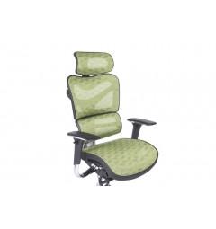 Poltrona ergonomica da ufficio 702 Verd