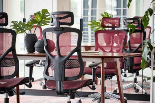 Sedie ergonomiche A norma Con Supporto lombare Per ufficio